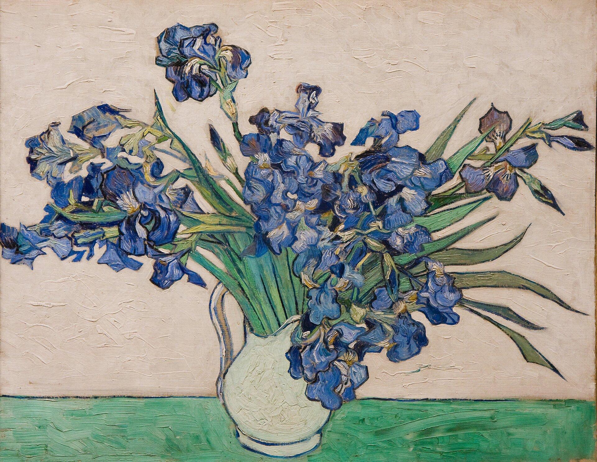 """Ilustracja przedstawia obraz olejny """"Irysy"""" autorstwa Vincenta Van Gogha. Artysta namalował na obrazie biały dzbanek zbukietem niebieskich kwiatów. Całość ustawiona jest na zielonym podłożu wtle znajduje się biała ściana. Kompozycja może wydawać się statyczna jednak bujne, powyginane irysy nadają obrazowi dynamiki. Tło oraz dzbanek zostały namalowane płasko, szerokimi pociągnięciami pędzla, grubą warstwą farby, impasto. Zupełnie inaczej artysta potraktował bukiet – tutaj malarz przyłożył dużą wagę do detalu iodwzorowania natury. Każdy kwiat jet namalowany zniezwykłą wnikliwością, wręcz czuje się ich aksamitną delikatność. Powyginane kształty niebieskich kwiatów stanowią kontrast zokalającymi je podłużnymi liśćmi."""