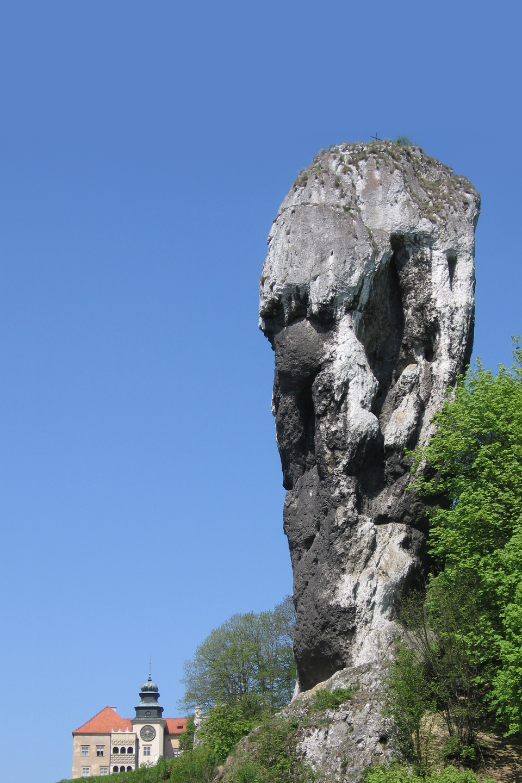 Zdjęcie przedstawiające samotną, wysoką skałę wOjcowskim Parku Narodowym, nazywaną Maczugę Herkulesa.