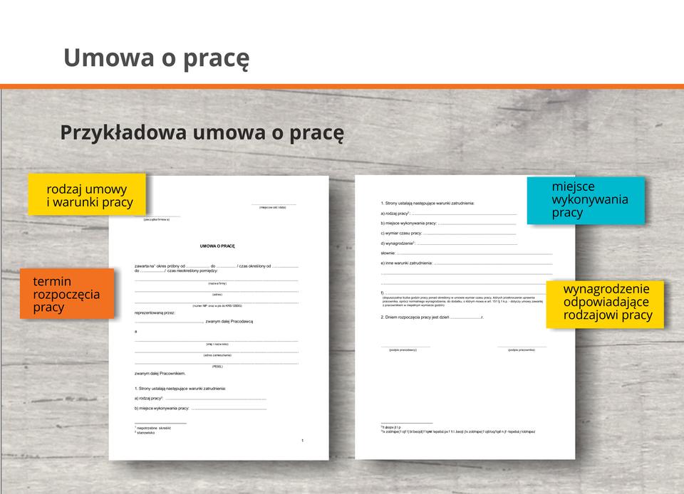 Grafika zawiera wzór umowy opracę, wktórej będą wyodrębnione następujące elementy.