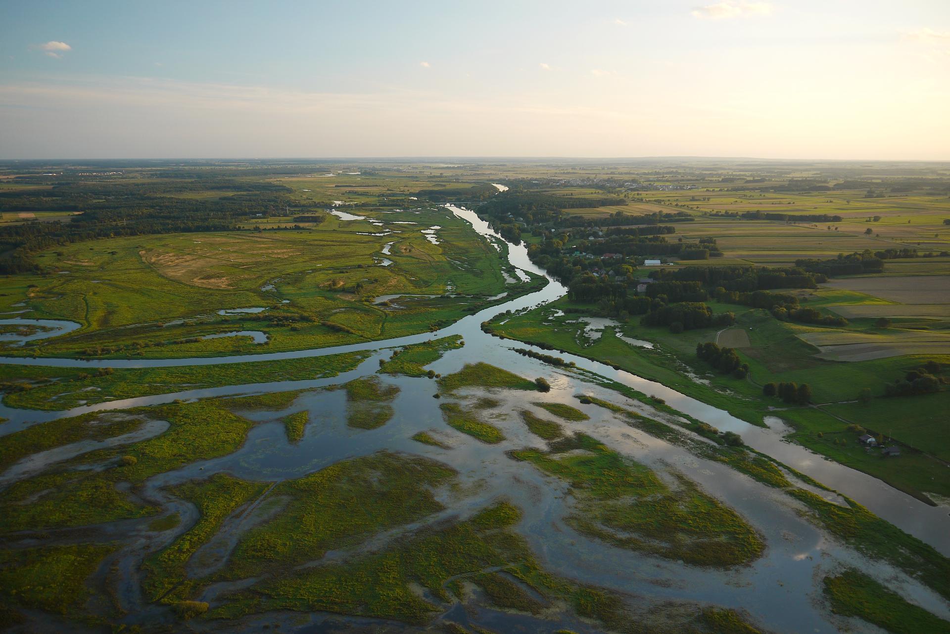 Kolorowe zdjęcie lotnicze. Słoneczny letni dzień. Zdjęcie obejmuje powierzchnię parku zalaną przez wody przepływającej rzeki. Kilkanaście odnóg rzeki przybiera owalne kształty wformie wijących się pasów wody. Wokół teren nizinny pokryty zieloną trawą. Po prawej stronie rzeki kilka zabudowań mieszkalnych wśród drzew. Wgłębi zdjęcia zabudowa małego miasteczka. Na linii horyzontu pola ilasy. Niebo zamglone.