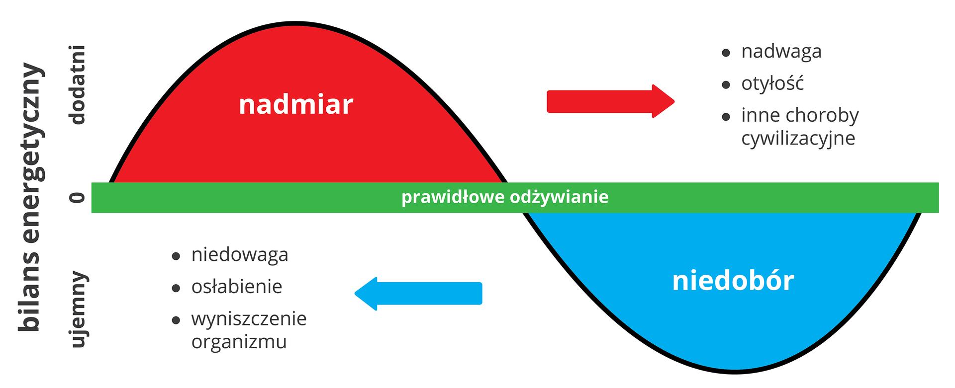 Ilustracja przedstawia bilans energetyczny człowieka. Zielona pozioma belka wśrodku schematu oznacza prawidłowe odżywianie. Zlewej pionowo opis: bilans energetyczny dodatni. Czerwone półkole ma napis: nadmiar. Strzałka wprawo wskazuje skutki przejadania się: nadwagę, otyłość, inne choroby cywilizacyjne. Udołu błękitne półkole znapisem: niedobór. Strzałka wlewo wskazuje skutki: niedowaga, osłabienie, wyniszczenie organizmu. Zlewej pionowo opis: bilans energetyczny ujemny.