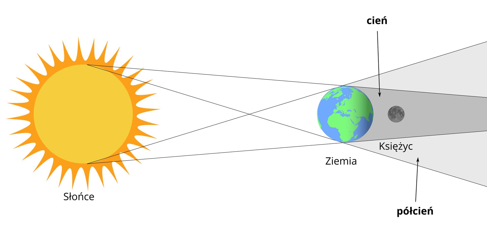 Schemat przedstawia na czym polega zjawisko zaćmienia Księżyca. Po lewej stronie rysunek Słońca. Żółte Słońce ośrednicy około trzech centymetrów. Na prawo kula ziemska. Średnica około piętnaście milimetrów. Na powierzchni widoczne zielone kontynenty oraz niebieskie obszary pokryte wodą. Za Ziemią szary Księżyc. Średnica Księżyca około siedem milimetrów. Słońce, Kula Ziemska iKsiężyc na jednej linii. Promienie Słońca padają na powierzchnię Ziemi. Promienie Słońca nie docierają do powierzchni Księżyca, który jest wcieniu Ziemi.