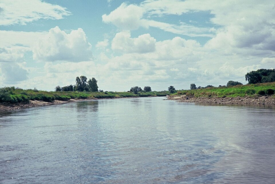 Szeroka spokojna rzeka, brzegi podmyte, kamieniste, dalej porośnięte trawą.