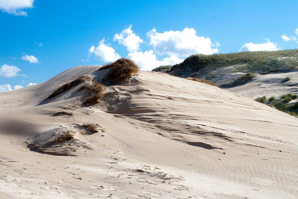 Na zdjęciu piaszczyste wzniesienie porośnięte pojedynczymi kępami traw.
