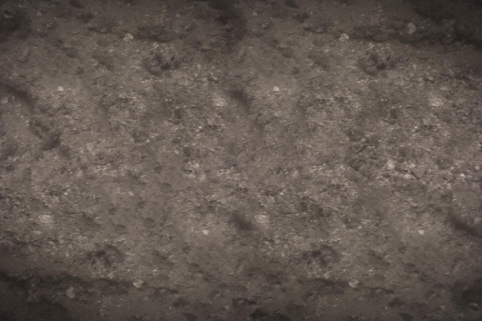 Fotografia dna jeziora eutroficznego: nieprzejrzysta woda, brak roślin