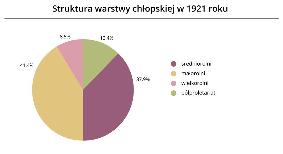 Struktura warstwy chłopskiej w1921 roku(diagram) Źródło: Contentplus.pl sp. zo.o., licencja: CC BY 3.0.