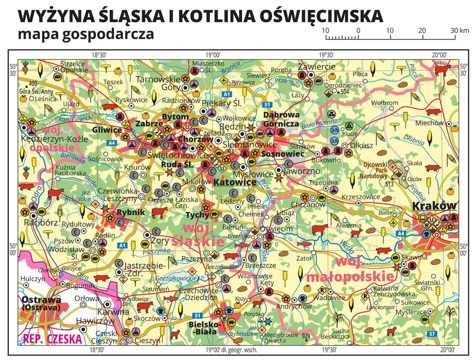 Ilustracja przedstawia mapę gospodarczą Wyżyny Śląskiej iKotliny Oświęcimskiej. Tło mapy wkolorze żółtym (grunty orne), jasnozielonym (łąki ipastwiska) izielonym (lasy). Mapa sięga od Kędzierzyna Koźla iRaciborza na zachodzie do Krakowa na wschodzie. Wcentralnej części Aglomeracja Śląska. Wlewym dolnym rogu fragment Republiki Czeskiej iOstrawa. Na mapie sygnatury obrazujące uprawy poszczególnych roślin, hodowlę zwierząt, przemysł, górnictwo ienergetykę, komunikację, turystykę, naukę, kulturę isztukę. Największe zagęszczenie sygnatur wKatowicach, Chorzowie, Sosnowcu, Dąbrowie Górniczej, Rudzie Śląskiej, Zabrzu, Gliwicach, Bytomiu iKrakowie. Duże zagęszczenie sygnatur wZawierciu, Rybniku,Tarnowskich Górach, Raciborzu iBielsku-Białej. Na obszarze całej mapy równomiernie rozłożone sygnatury związane zhodowlą zwierząt iuprawą roślin.Na mapie przedstawiono sieć dróg ikolei, porty wodne ilotnicze, granice województw, granicę państwa. Opisano województwa opolskie, śląskie imałopolskie. Opisano Republikę Czeską. Opisano parki narodowe.Mapa zawiera południki irównoleżniki, dookoła mapy wbiałej ramce opisano współrzędne geograficzne co trzydzieści minut.