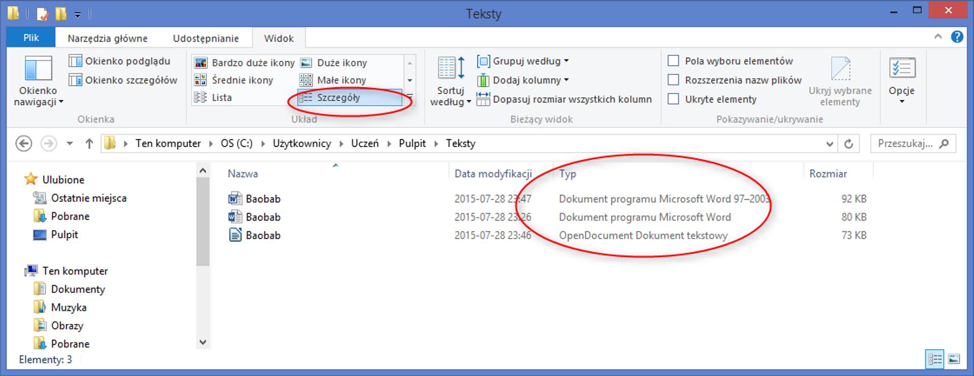 Zrzut okna wybranego folderu zzaznaczonymi typami plików