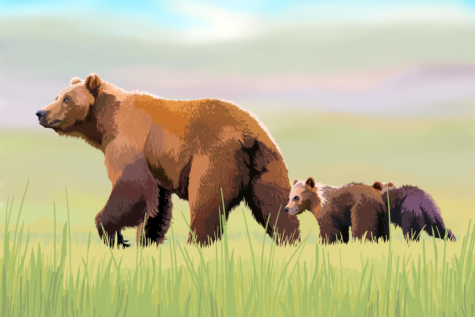 Grafika komputerowa prezentująca niedźwiedzicę zdwoma młodymi niedźwiadkami podążającymi za nią.