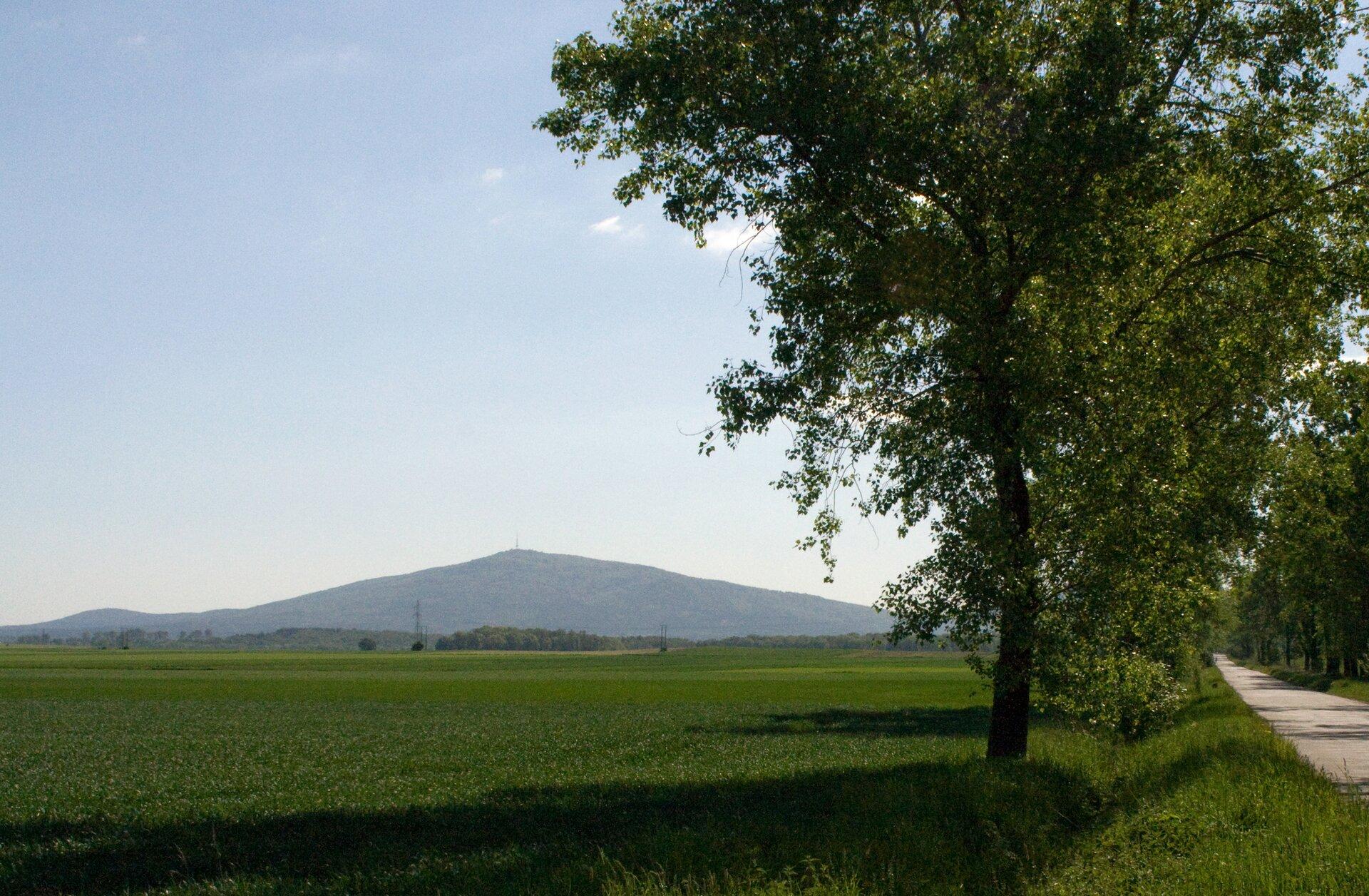 Galeria przedstawia kolejno: zdjęcie krajobrazu, gdzie na pierwszym tle widoczna jest łąka, po prawej stronie droga, wzdłuż której biegnie aleja drzew. Woddali widoczne dwa wzniesienia, wysoka góra iznacznie niższe wzgórze lub pagórek.