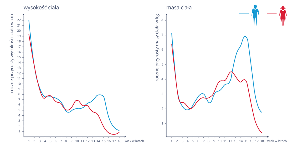 Ilustracja przedstawia dwa wykresy liniowe. Niebieski kolor oznacza chłopca, czerwony dziewczynkę. Lewy wykres opisuje wysokość ciała. Oś Xwyznacza wiek wlatach, oś Ywskazuje roczne przyrosty masy ciała wcentymetrach. Prawy wykres opisuje masę ciała. Oś Xoznacza wiek wlatach, na osi Yoznaczono roczny przyrost masy ciała wkilogramach.