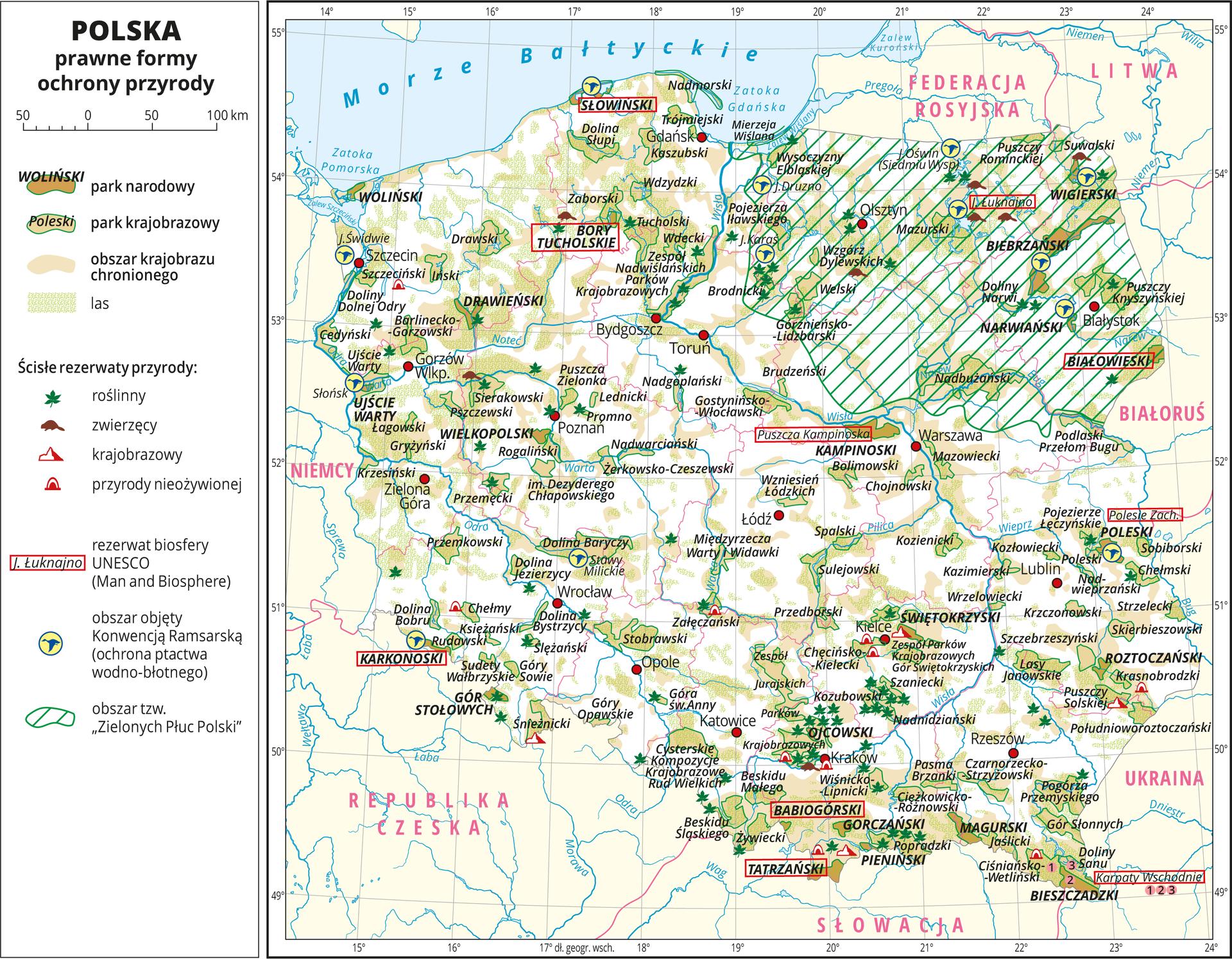 """lustracja przedstawia mapę Polski. Oznaczono iopisano miasta wojewódzkie. Granice województw oznaczono czerwonymi liniami. Opisano państwa sąsiadujące. Na mapie za pomocą barwnych plam pokazano prawne formy ochrony przyrody wPolsce: parki narodowe, parki krajobrazowe, obszary chronionego krajobrazu ilasy. Występują one na całej powierzchni mapy jednak największe zagęszczenie widać wrejonie pojezierzy, wyżyn, kotlin oraz wgórach. Opisano nazwy parków narodowych irezerwatów. Nazwy miejsc, które są rezerwatami biosfery UNESCO otoczono czerwoną ramką – takich miejsc jest dziesięć iwystępują na terenie całej Polski. Za pomocą sygnatur przedstawiono rezerwaty przyrody: roślinne, zwierzęce, krajobrazowe, przyrody nieożywionej. Ich największe zagęszczenie jest na terenach parków narodowych ikrajobrazowych – najwięcej na obszarze Wyżyny Krakowsko-Częstochowskiej. Za pomocą sygnatury niebieskiego ptaka wżółtym kółku przedstawiono obszary objęte Konwencją Ramsarską – obszary ochrony ptactwa wodno-błotnego – takich obszarów jest kilkanaście iwystępują głównie na Pojezierzu Mazurskim, wDolinie Baryczy iuujść rzek. Obszar """"Zielonych Płuc Polski"""" zakreskowano kolorem zielonym, znajduje się on na północnym-wschodzie isięga do Bugu. Mapa zawiera południki irównoleżniki, dookoła mapy wbiałej ramce opisano współrzędne geograficzne co jeden stopień. Wlegendzie zlewej strony mapy objaśniono znaki użyte na mapie."""