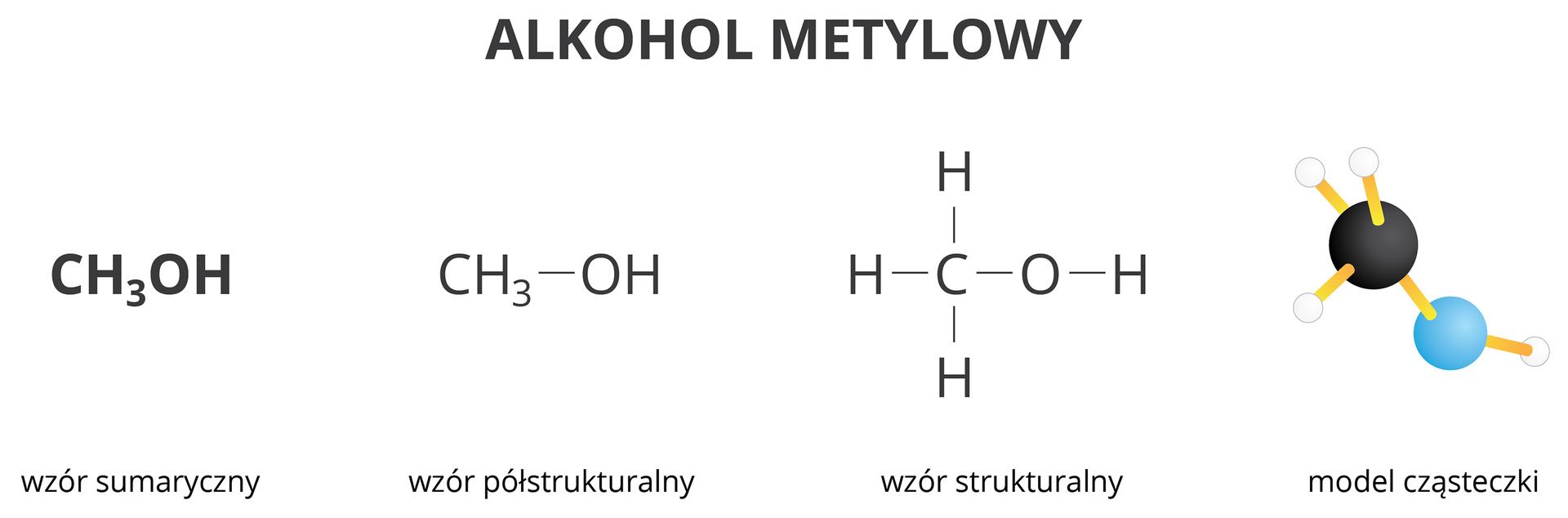 Model iwzory alkoholu metylowego