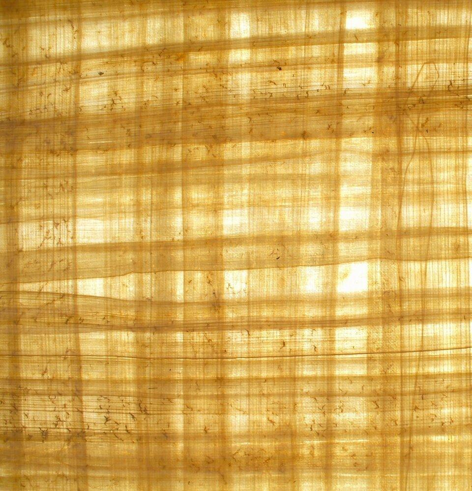 Papirus Papirus Źródło: domena publiczna.