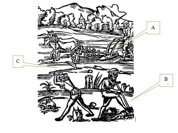 A– rysunek przedstawia człowieka trzymającego wrękach narzędzie uprawowe do wykonywania orki. Narzędzie ciągną za sobą dwa konie, akieruje nim chłop. B–rysunek przedstawia chłopa, który zanurza wziemi narzędzie służące do przekopywania. C-  rysunek przedstawia chłopa, który zamachuje się znad głowy narzędziem służącym do spulchniania gleby, kopczykowania roślin czy zwalczania chwastów.