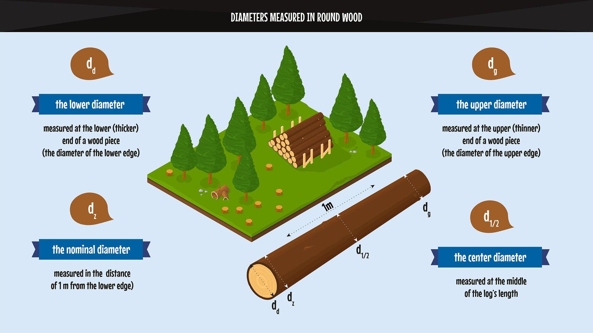 The photo presents the methods of measuring diameters when the wood is irregular. Grafika przedstawia sposoby mierzenia średnic, gdy drzewo jest nieforemne.