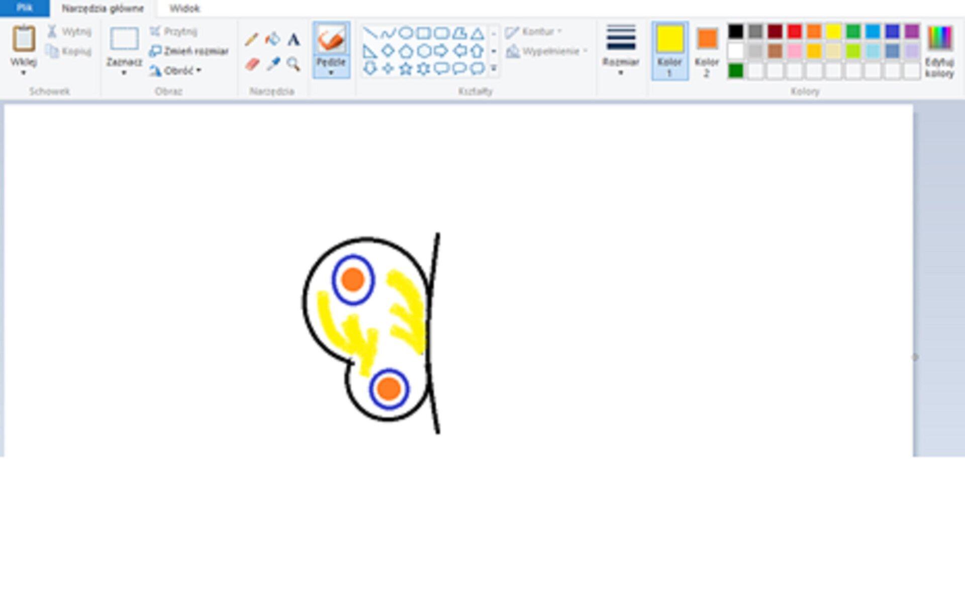 Zrzut okna programu Paint zilustracją skrzydła motyla