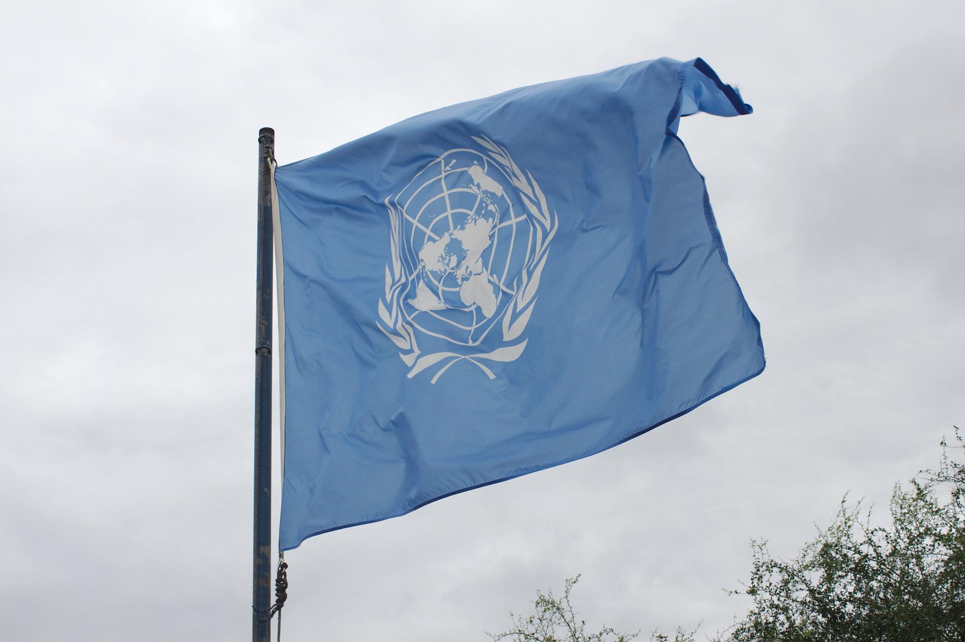 Kolorowe zdjęcie przedstawia flagę ONZ. Niebieska prostokątna flaga zawieszona na maszcie. Flaga powiewa wprawą stronę zdjęcia. Na niebieskiej powierzchni, na środku flagi, białe logo ONZ. Centralna część logo to kula ziemska zbiałymi konturami kontynentów. Wokół kuli ziemskiej, po lewej iprawej stronie, białe gałązki zliśćmi.
