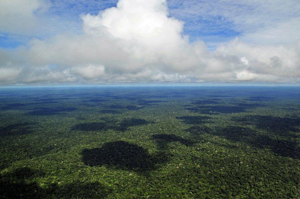 Na zdjęciu lotniczym rozległa płaska nizina porośnięta lasami.
