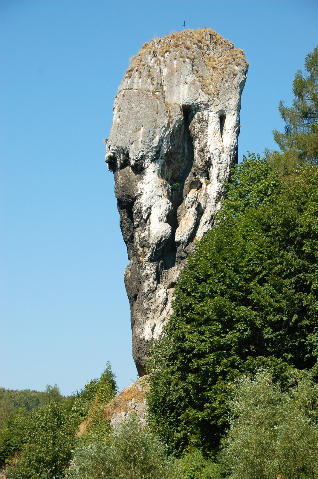 Fotografia przedstawia jasną pionową skałę wotoczeniu drzew. Jest to Maczuga Herkulesa wOjcowskim parku Narodowym.