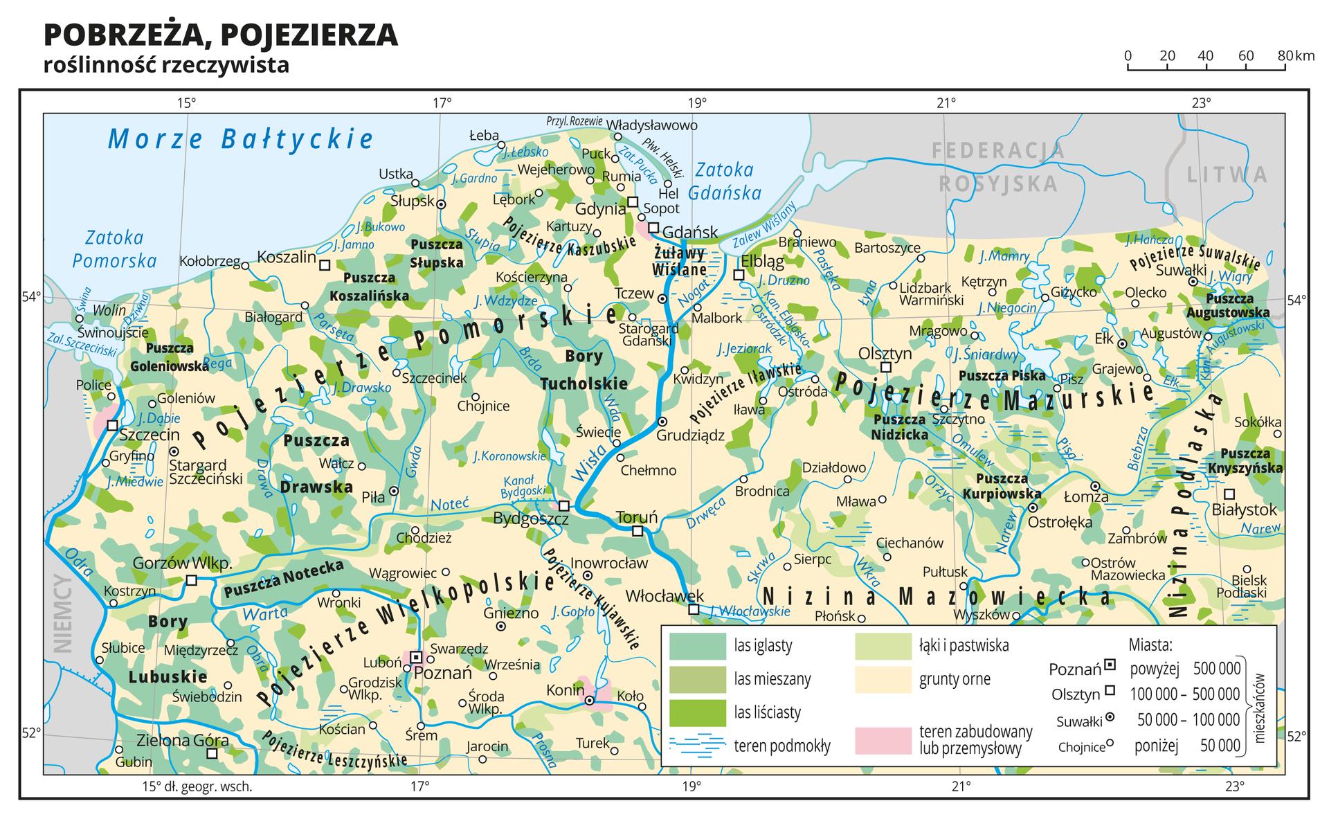 Ilustracja przedstawia fragment mapy Polski obejmujący pobrzeża ipojezierza, na którym przedstawiono roślinność rzeczywistą. Na mapie przeważa kolor beżowy obrazujący grunty orne, na którym równomiernie rozmieszczone są plamy koloru zielonego obrazujące występowanie lasów iglastych (kolor ciemnozielony). Wpółnocnej części występują również lasy liściaste oznaczone kolorem jasnozielonym, awe wschodniej części występują łąki ipastwiska oznaczone kolorem bardzo jasnym zielonym.Oznaczono iopisano miasta, rzeki ijeziora. Opisano pojezierza oraz państwa sąsiadujące zPolską. Podpisano również większe kompleksy leśne, jak Bory Tucholskie, Puszcza Knyszyńska itym podobne.Dookoła mapy wbiałej ramce opisano współrzędne geograficzne co dwa stopnie. Wlegendzie mapy objaśniono znaki ibarwy użyte na mapie.