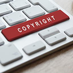 Revision on the copyright
