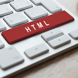 Revision on the HTML
