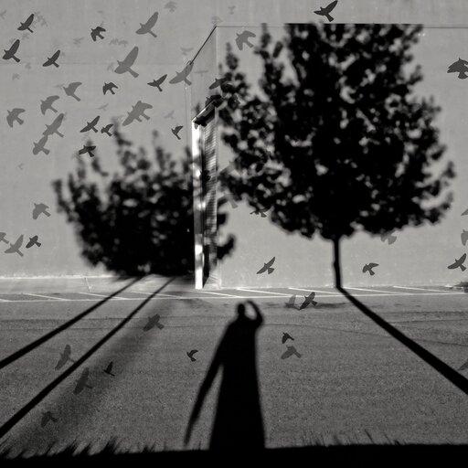 Czym jest wolność? – egzystencjalistyczne odpowiedzi Alberta Camusa iSimone Weil