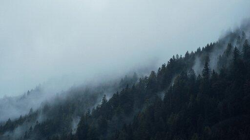 Czym się różni dym od mgły?