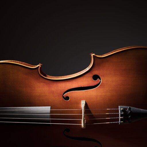 Wybrani kompozytorzy XVIII/XIX wieku – Karol Lipiński wirtuoz wiolinistyki