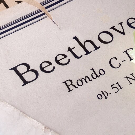 Wybrani kompozytorzy – Ludwig van Beethoven