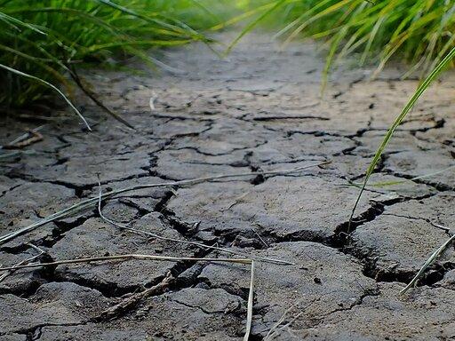 Przyczyny iskutki degradacji gleb