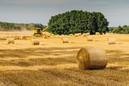 Rozwój rolnictwa wPolsce na przestrzeni wieków