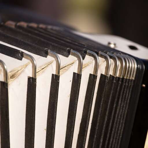 Organy iakordeon – instrumenty dęte