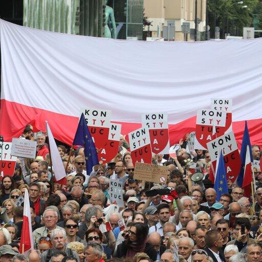 Formy niekonwencjonalnej partycypacji politycznej (np. zgromadzenia, petycje) wPolsce