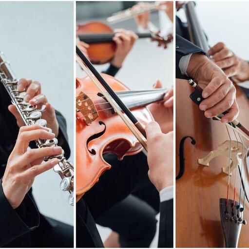 Poznaj orkiestrę symfoniczną