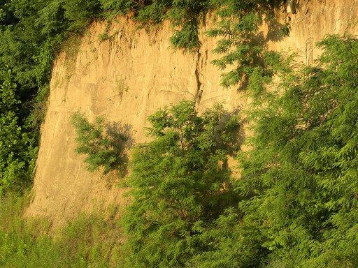 Pierwotne iwtórne pokrywy lessowe – warunki powstawania, występowanie iznaczenie gospodarcze