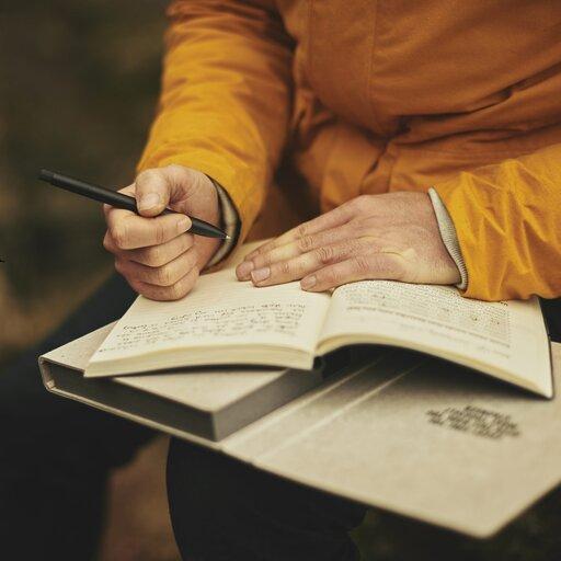 Literatura ihistoria – dzienniki pisarzy