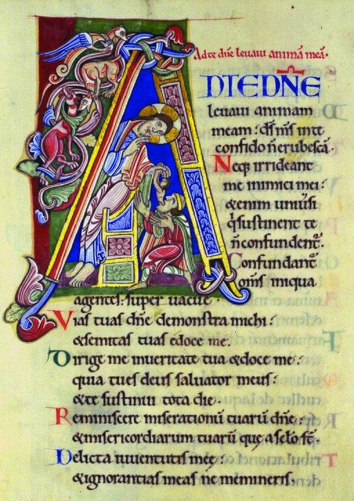 Dramat Maryi pod krzyżem…