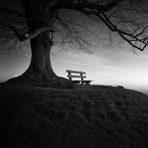 <em>Samotność</em>. Interpretacja utworu Jana Twardowskiego