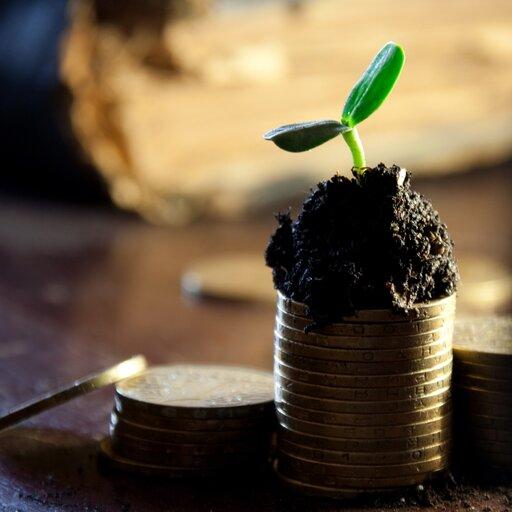 Gospodarka iekonomia – pochodzenie pojęć