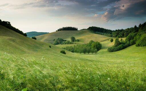 Główne funkcje krajobrazów