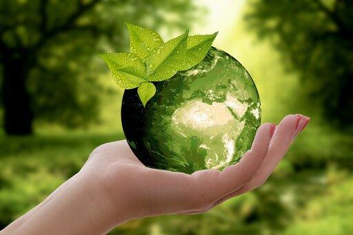 Krajowe organizacje iprogramy ochrony bioróżnorodności
