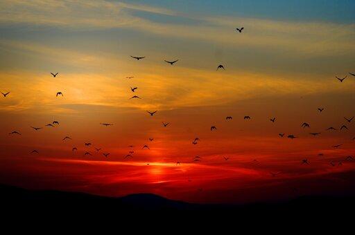 0770 Jak powstają kolory nieba?