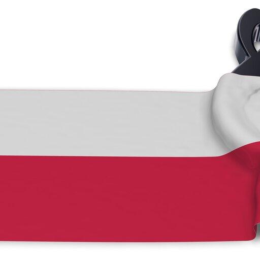 Ślady polskie wmuzyce obcej