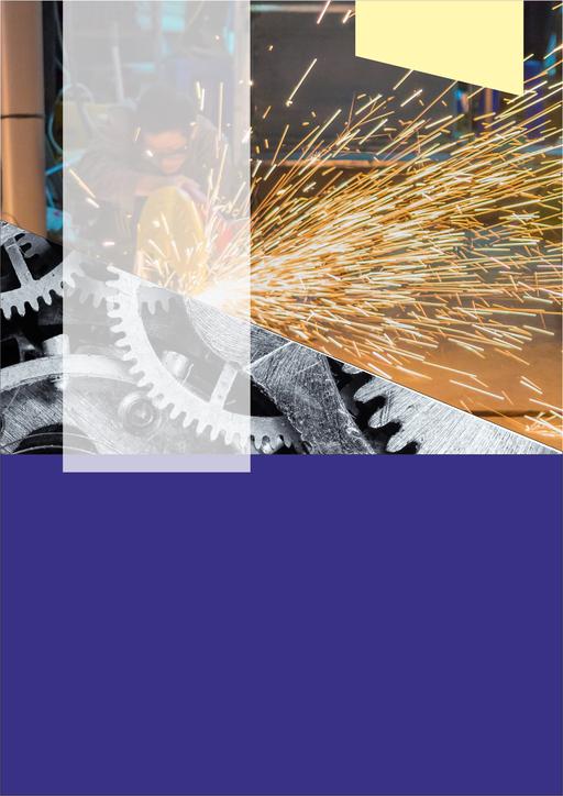 Branża mechaniczna - budowa maszyn, obróbka metali i tworzyw sztucznych (6M)