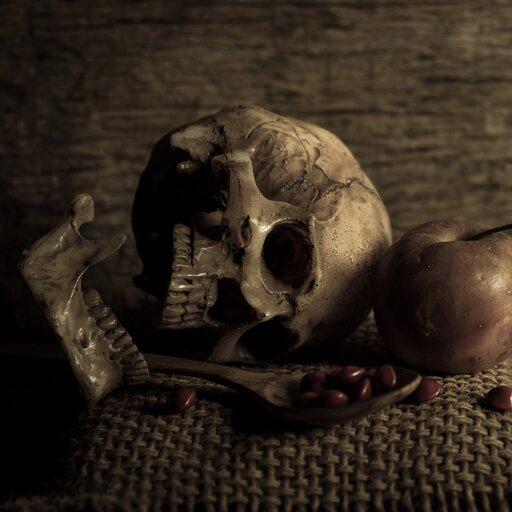 Elementy ludyczne ikomiczne w<em>Rozmowie mistrza Polikarpa ze Śmiercią</em>