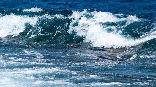 Prądy morskie abioróżnorodność