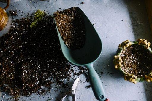 Cechy gleb strefowych, astrefowych ipozastrefowych