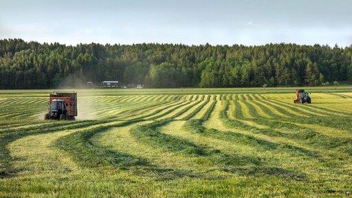 Zmiany zachodzące wwybranych elementach środowiska przyrodniczego wwyniku rolniczej działalności człowieka